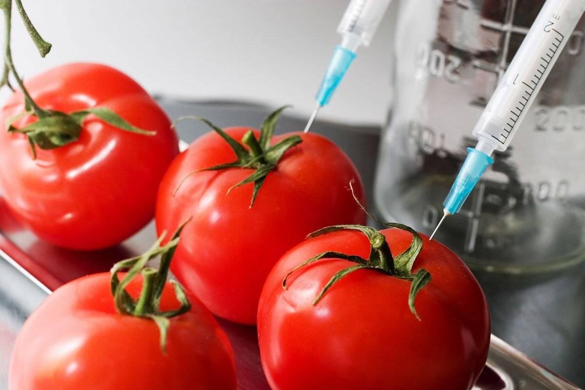bahan berbahaya dan beracun pada makanan