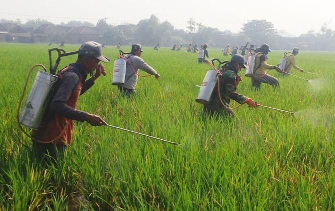keselamatan kerja dalam bidang pertanian