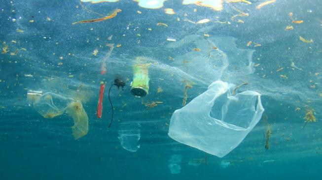 dampak polusi air bagi lingkungan